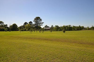 Dayton Residential Lots & Land For Sale: 6 Acres County Road 4865