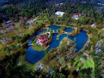 Magnolia Single Family Home For Sale: 9011 Breckenridge Drive