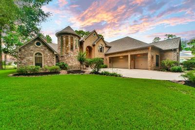 Tomball Single Family Home For Sale: 17115 Lakeway Park