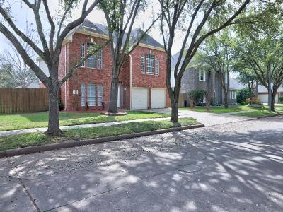 Katy Single Family Home For Sale: 19123 Mockingbird Valley Drive