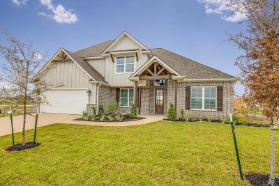 College Station Single Family Home For Sale: 4206 Lismore Lane