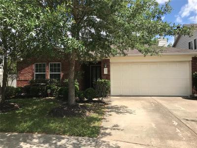 Houston Single Family Home For Sale: 8727 Kirksage Drive