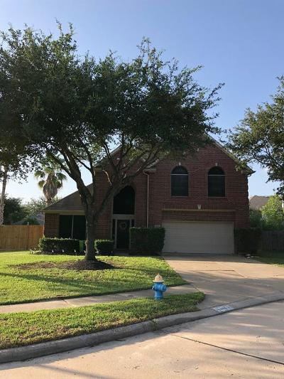 Katy Single Family Home For Sale: 19406 Concho Springs Drive