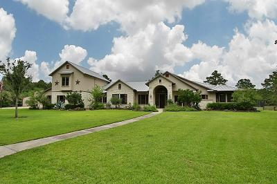 Tomball Single Family Home For Sale: 21120 Will Rogers Taxiway