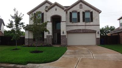 Harris County Single Family Home For Sale: 4227 Bearberry Avenue