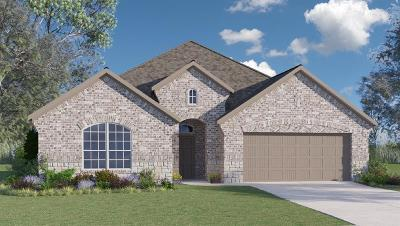 Rosenberg Single Family Home For Sale: 7927 Blue Lake Drive