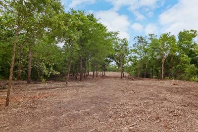 Friendswood Residential Lots & Land For Sale: 2416 Airline Drive