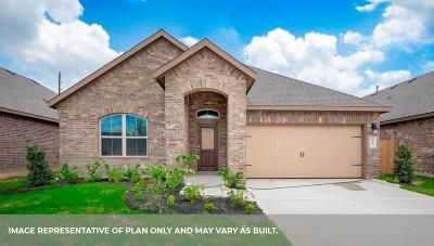 Pearland Single Family Home For Sale: 2723 S Galveston Avenue