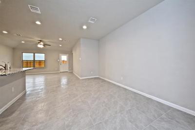 Rosenberg Single Family Home For Sale: 6414 Indigo Cliff Drive