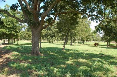 Fort Bend County Farm & Ranch For Sale: Gainsborough Drive