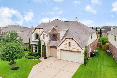 Friendswood Single Family Home For Sale: 4342 Staghorn Lane