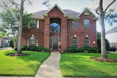 Pearland Single Family Home For Sale: 3610 Pine Tree Drive