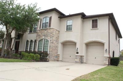 Sugar Land Single Family Home For Sale: 7403 Sadler Court
