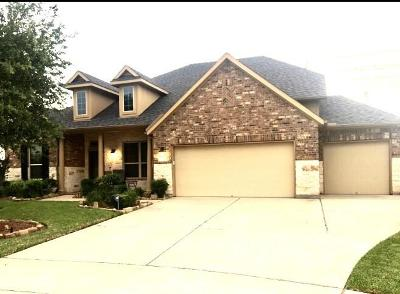 Fulshear Single Family Home For Sale: 27818 Yorkshire Brook Lane