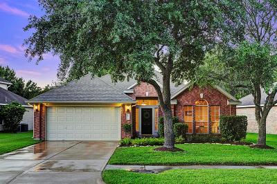 Katy Single Family Home For Sale: 20734 Smokey Sage Drive