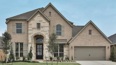 Tomball Single Family Home For Sale: 20138 Desert Foal Drive