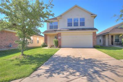 Houston Single Family Home For Sale: 2810 Davenridge Lane