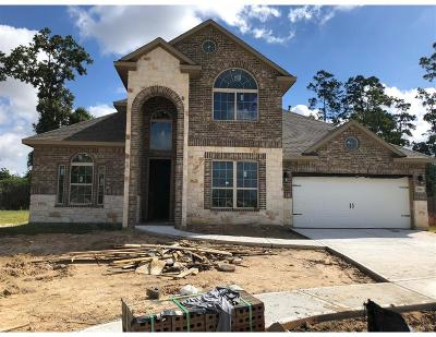 Tomball Single Family Home For Sale: 20806 Passelande Drive