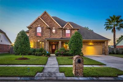Friendswood Single Family Home For Sale: 1608 Stoney Lake Drive