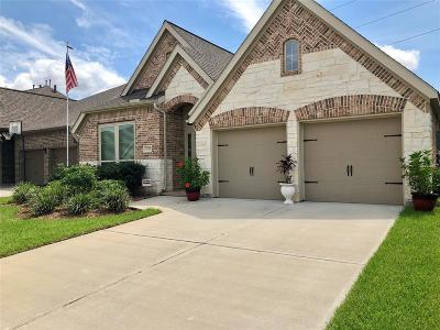 Pearland Single Family Home For Sale: 3717 Cibolo Court