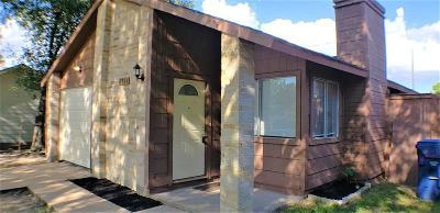 Houston Single Family Home For Sale: 6358 Porterway Drive