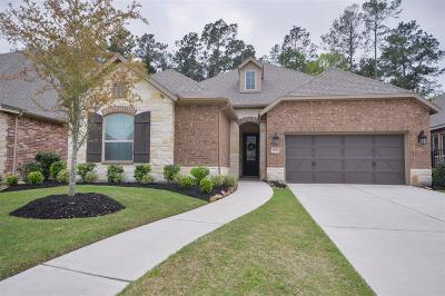 Galveston County, Harris County Single Family Home For Sale: 17211 Rainier Creek Drive
