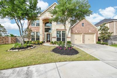 Fulshear Single Family Home For Sale: 28222 Carmel River Court