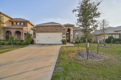 Cypress Single Family Home For Sale: 17119 Fable Springs Lane