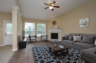 Houston Single Family Home For Sale: 11423 Creekwood Hills Lane