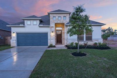 New Caney Single Family Home For Sale: 18953 Columbus Mill Drive