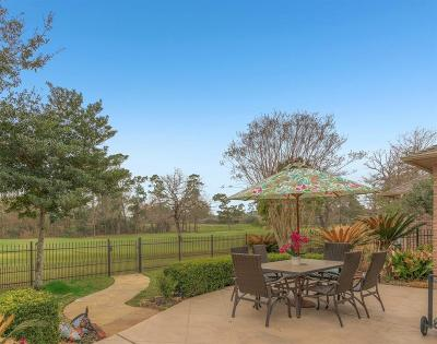 Spring Single Family Home For Sale: 25135 Arcane Court