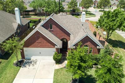 Pearland Single Family Home For Sale: 2202 Pearl Bay Court