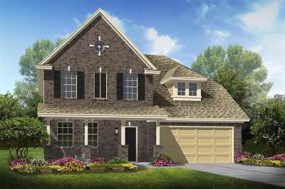 League City Single Family Home For Sale: 2844 Elia Lane