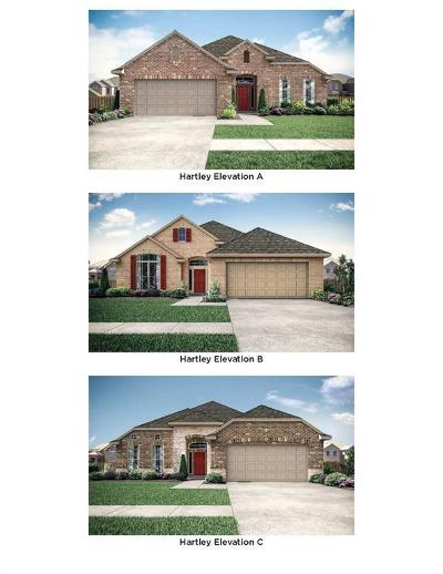 Rosenberg Single Family Home For Sale: 6218 Mason Way