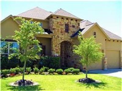 League City Single Family Home For Sale: 1325 Bastrop Glen Lane
