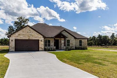 Conroe Single Family Home For Sale: 9006 Water Buck Lane