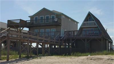 Brazoria County Single Family Home For Sale: 109 Beach Avenue