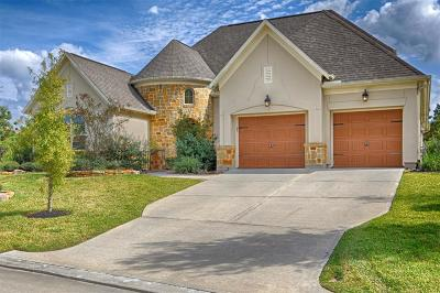 Tomball Single Family Home For Sale: 38 Wooded Overlook Drive