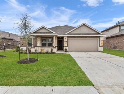Manvel Single Family Home For Sale: 46 Royal Rose Drive