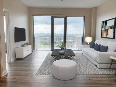 Harris County Rental For Rent: 3233 W Dallas St #1011