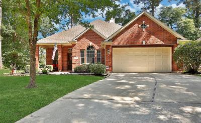Montgomery Single Family Home For Sale: 3 Alba Road