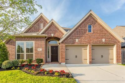 Pearland Single Family Home For Sale: 13935 Naples Park Court