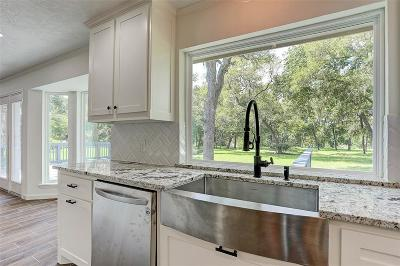 Friendswood Single Family Home For Sale: 15602 Wandering Trail