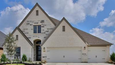 Tomball Single Family Home For Sale: 20126 Desert Foal Drive