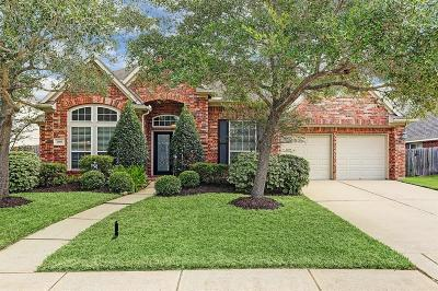 Pearland Single Family Home For Sale: 2905 Amanda Lee Drive