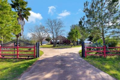 Tomball Single Family Home For Sale: 19703 Kelly Lane