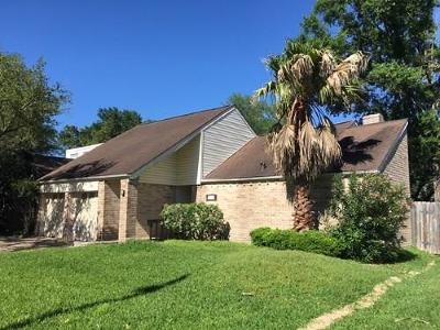 Houston Single Family Home For Sale: 2027 Gray Falls Drive