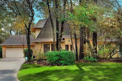 Spring Single Family Home For Sale: 26 Split Rock Road