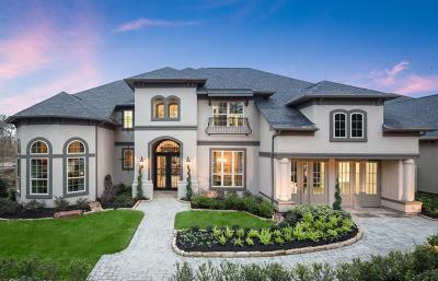 Conroe Single Family Home For Sale: 10490 Lake Palmetto Drive
