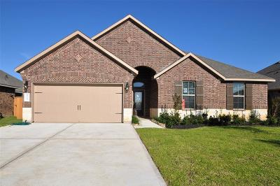 League City Single Family Home For Sale: 2753 Ahnya Lane